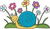 SNAILS: Special Needs and Inclusive Library Services | Content & Format Ideas | Scoop.it