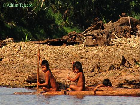 About the Amazon | Amazon Aid Foundation | Rainforest EXPLORER:  News & Notes | Scoop.it