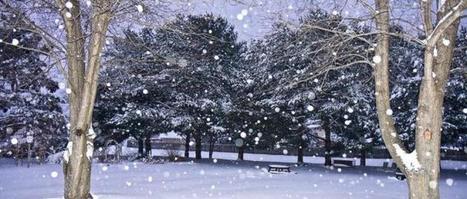 Météo : alerte à la neige dans 19 départements   Au hasard   Scoop.it