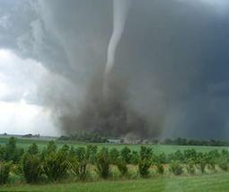 Living through a tornado does not shake optimism   Sustain Our Earth   Scoop.it