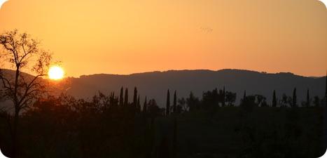 Ciao Italia / Tuscany | Visit Montalcino | Scoop.it