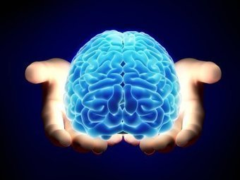 The Neuroethics Blog: Brain Connectomes: Your ticket to the future   DigitAG& journal   Scoop.it