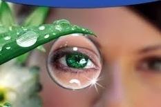 Cara Mencegah Penyakit Mata Dengan Diet Sehat | Zona viv | Tips Kesehatan | Scoop.it