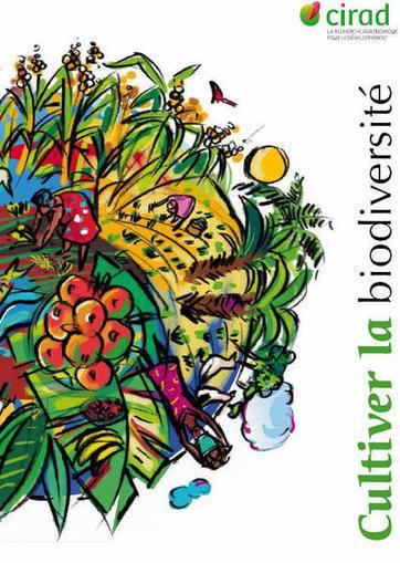 Peut-on concilier agriculture intensive et biodiversité ?   L'hebdo du DD   Scoop.it