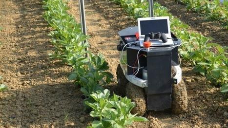 Toulouse va accueillir la finale de Move your robot, le challenge de la robotique agricole | Robotique et pme | Scoop.it