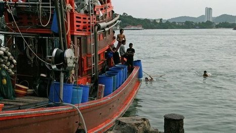 Forced to fish on Thailand's trawlers | Modern Day Slavery | Scoop.it
