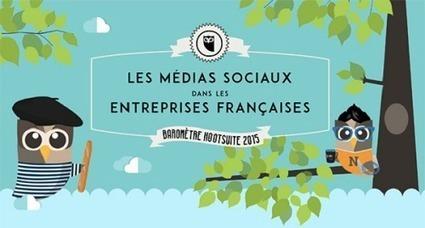 [#Infographie] Baromètre Marketing des Médias Sociaux en France | Social media | Scoop.it