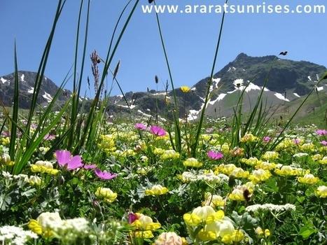 Mount Kackar Trek and Ararat Trekking Tour | Climb Mount Ararat in Turkey | Scoop.it