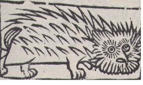 Witchcraft | Brujería, Hechicería, Herejía y Masonería: Mitos o realidades? | Scoop.it