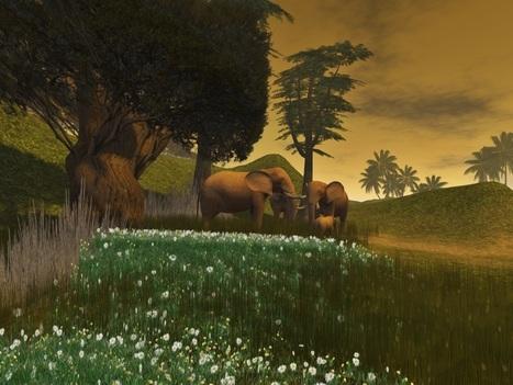 African safari   Second Life Today   Scoop.it