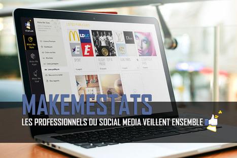 Les professionnels du social media veillent sur MakeMeStats | ADN des Réseaux Sociaux | Scoop.it