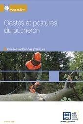 MSA - 7481 Gestes et postures du bûcheron - Visualisation SSA | Santé Sécurité | Scoop.it