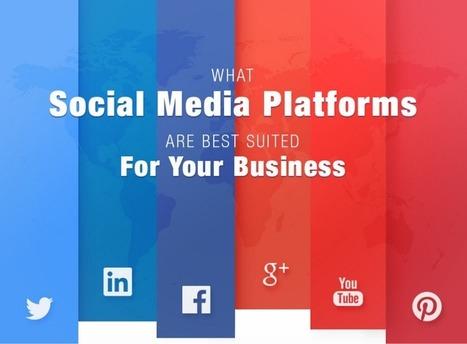 Qual è il Social Media giusto per la tua azienda? | Infografica | Scoop Social Network | Scoop.it