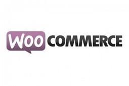 Creating a Wordpress Shop Using WooCommerce | Web creation basics | Scoop.it