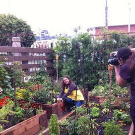 Celebrating Gardeners and Gardens 2012 | Annie Haven | Haven Brand | Scoop.it