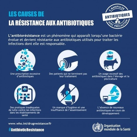 OMS : semaine mondiale pour un bon usage des antibiotiques | Conseils médicaux | Scoop.it