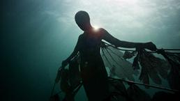 El mundo submarino bajo las aguas mexicanas - BBC Mundo   Naval Museums Storytelling   Scoop.it