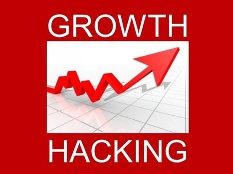 Le Growth Hacking – facteur clé de succès pour les Web Entrepreneurs | e-commerce BtoB & BtoC | Scoop.it