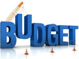 Union Budget 2014: Live updates   Financial Planning   Scoop.it