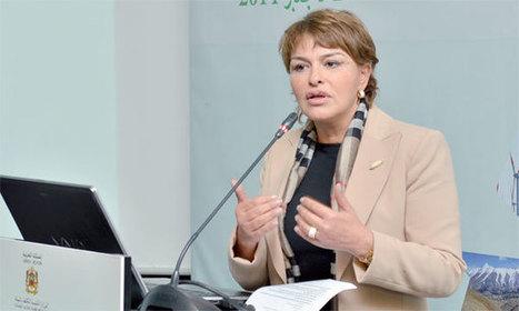 El Haité : Le Maroc fera de grandes annonces durant la COP22 - La Nouvelle Tribune | overblog maroc | Scoop.it