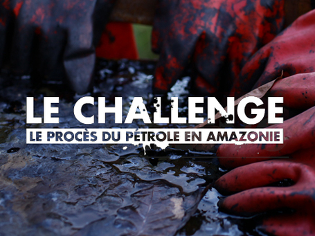 Le Challenge | Canal+ | L'actualité du webdocumentaire | Scoop.it