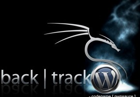 WordPress Arena: A Blog for WordPress Developers, Designers and Blogger   How To Speed Up Your WordPress Websites Loading Times   Scoop.it