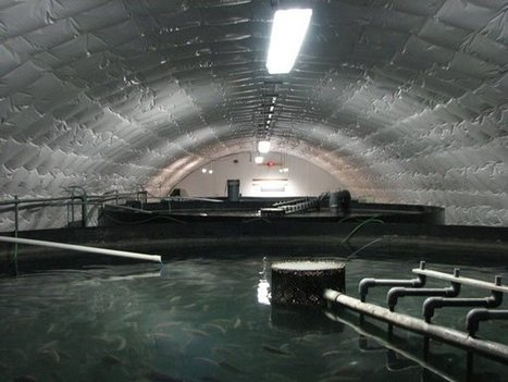 Land-based aquaculture coming to eastern Canada | Aquaculture | Scoop.it