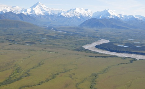 #Arctic Field Campaign to Examine #Ecosystem Impacts of Changing #Climate   Messenger for mother Earth   Scoop.it