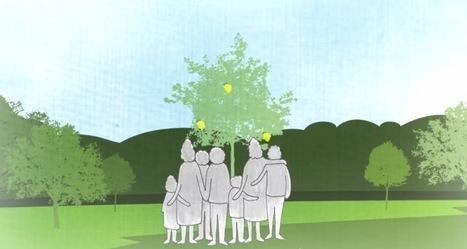 Enterro sustentável: como transformar um corpo em adubo   Eco   Scoop.it