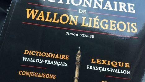 Vous êtes perdus en wallon liégeois? Voici le dictionnaire | Merveilles - Marvels | Scoop.it
