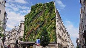 Tweet from @AndreeBaril   Jardins urbains   Scoop.it