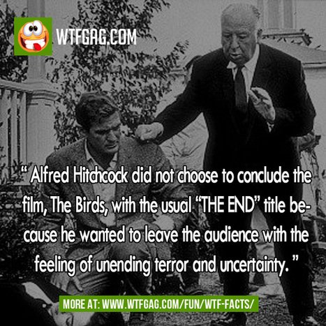 Alfred Hitchcock in The Birds | Wtfgags | Scoop.it