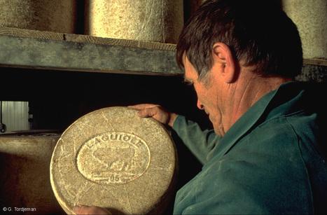 Pour tout savoir sur le fromage de Laguiole | Revue de Web par ClC | Scoop.it