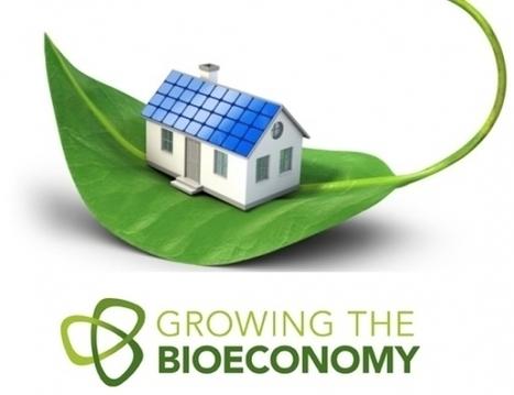 Bioeconomia: nasce l'osservatorio della Commissione europea | Sostenibilità e Responsabilità Sociale d'Impresa | Scoop.it