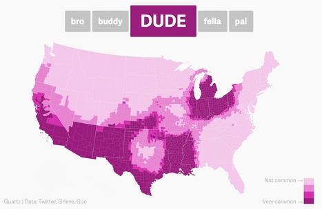 The dude map: How Americans refer to their bros - Quartz | INTRODUCTION TO THE SOCIAL SCIENCES DIGITAL TEXTBOOK(PSYCHOLOGY-ECONOMICS-SOCIOLOGY):MIKE BUSARELLO | Scoop.it