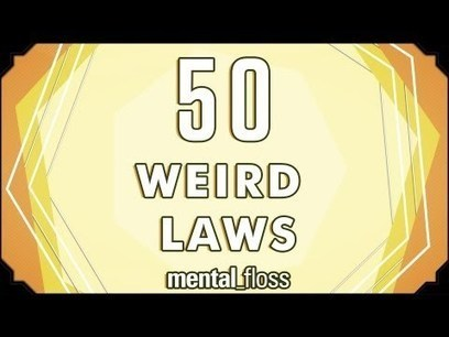 50 Weird Laws | social norms and abnormalities | Scoop.it