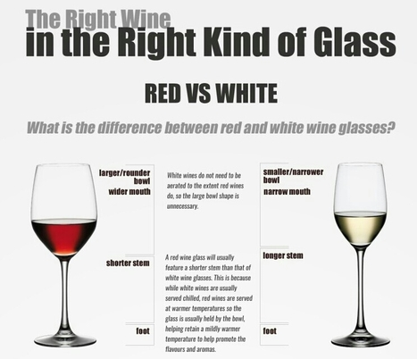 The Right Wine in the Right Kind of Glass | Cool Infographics | World's Best Infographics | Scoop.it