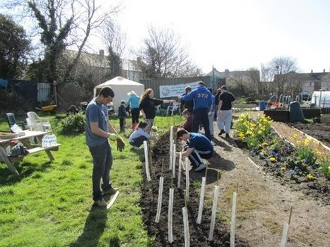 Planting trees in your community - Woodland Trust | CW | Scoop.it