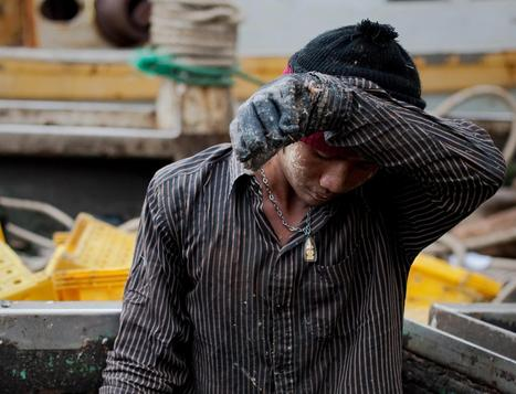 Five Reasons Slaves Still Catch Your Seafood - NBC News   Nature Animals humankind   Scoop.it
