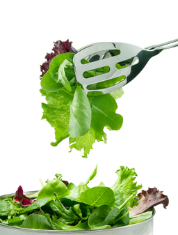 Living Innovative™ - Live Sustainably. Live Responsibly. Live Well.: SUPER EASY TIPS TO KEEP YOUR LETTUCE FRESH LONGER   Food Storage   Scoop.it