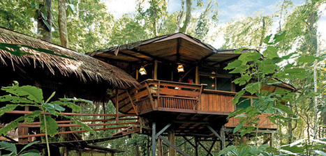 A Full-blown Enjoyment in the Tree House Hotels of Costa Rica | Finding Amazing Vacation Rentals in Costa Rica | Scoop.it