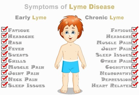 Lyme Disease Symptoms | Disease and Treatment | Scoop.it