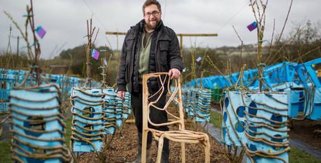 En Grande-Bretagne, des chaises 100% naturelles poussent dans un champ | Ca m'interpelle... | Scoop.it