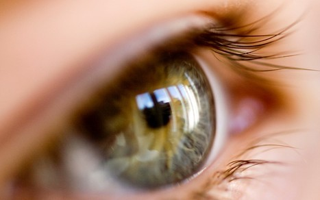 Scientists develop 'bionic eye' implants which could restore near-normal sight to the blind | Latest Science News | Scoop.it