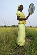 Les femmes sont responsables de la moitié de la production alimentaire mondiale | Questions de développement ... | Scoop.it