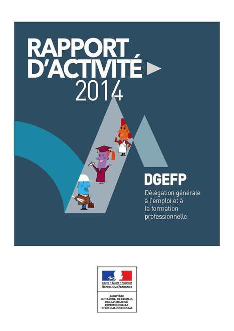 Rapport d'activité DGEFP 2014 | Culture Mission Locale | Scoop.it