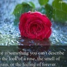 Love Quotes | Zquotes | Love Quotes | Scoop.it