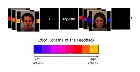 Neurofeedback – or how the mind trains the brain | Psykologia, sen tutkimus ja soveltaminen | Scoop.it