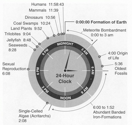 History Of Life On Earth Shown As A 24 Hour Clock | Amazing Science | Scoop.it