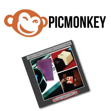 Lo nuevo de Picmonkey, uno de los editores de fotos online más sencillos | Educacion, ecologia y TIC | Scoop.it